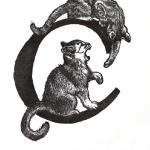 Cats Limited Edition Wood Engraving 5 x 3 Print image $47