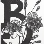 Bees in Bluebells Limited Edition Wood Engraving $45
