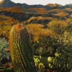Desert Evening Karen Petrovich 20 x 16 Oil  $975